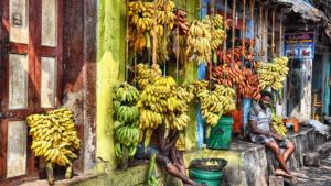 Guide de voyage pour visiter Madurai