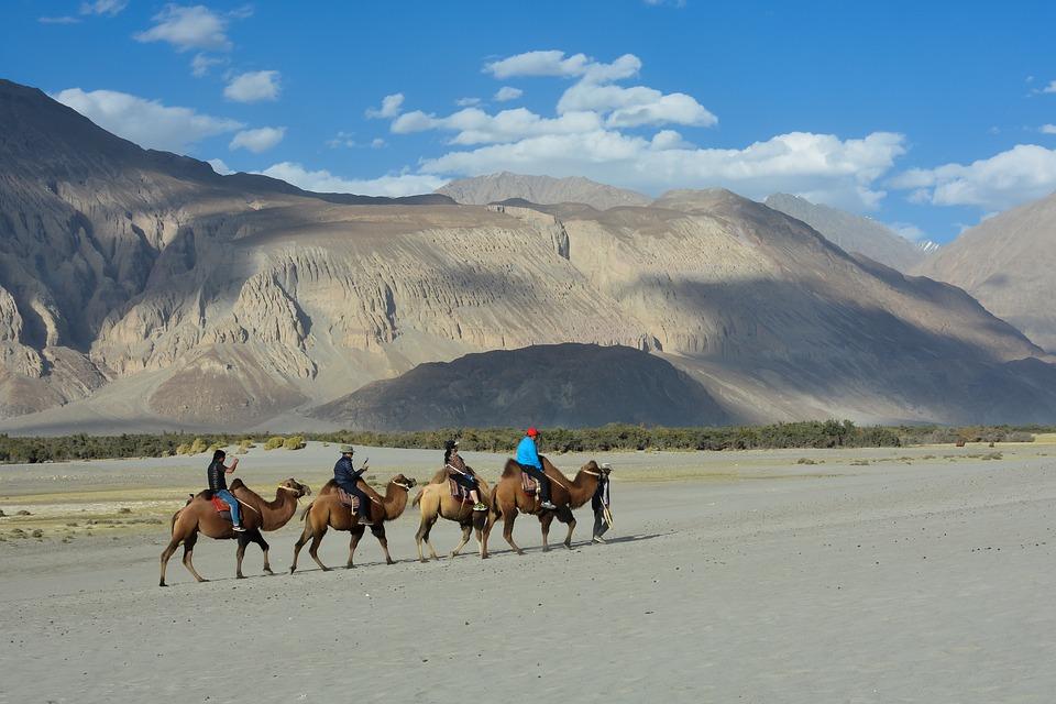 Séjour au Ladakh
